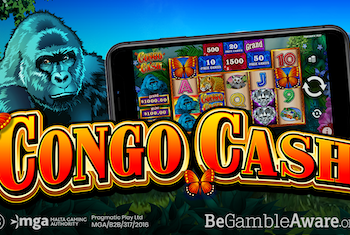 Head to the Jungle for Congo Cash