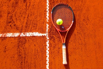 Win Free Bets with Mr Green on the French Open
