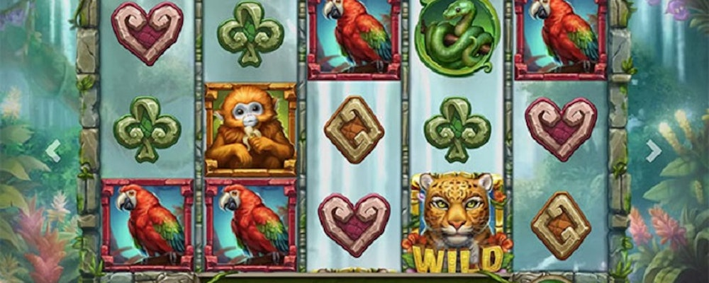 Rainforest Magic Slot from Play'N GO