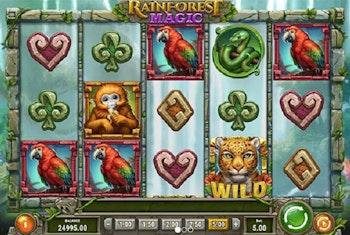 Rainforest Magic Slot from Play'N GO