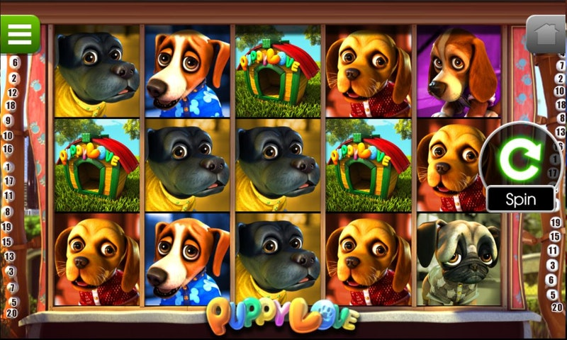 Play Puppy Love from Betsoft